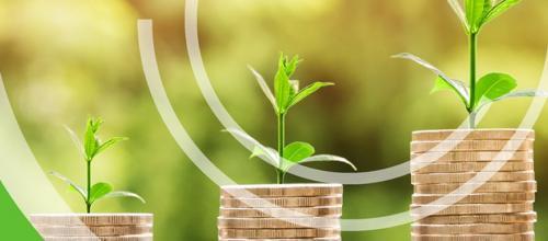 Finanza a impatto per i cambiamenti climatici
