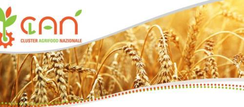 Paolo Bonaretti nominato presidente del Cluster Agrifood Nazionale