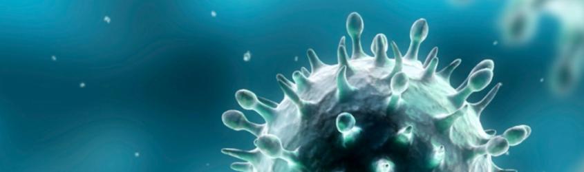 Cluster Scienze della vita Alisei