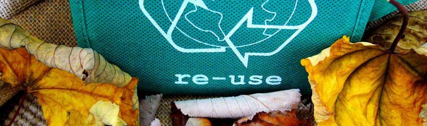 Economia circolare: strumenti di Certificazione e green marketing per le aziende
