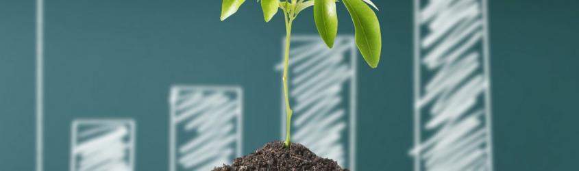 GREEN JOBS: lavorare nel mondo dell'economia sostenibile