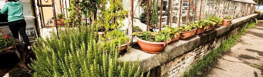 ASTER @ Le Serre dei Giardini  - percorso di accelerazione